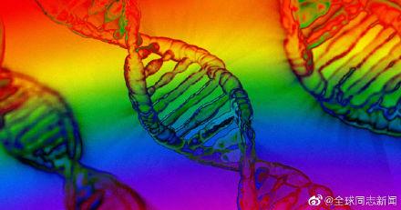 """""""同性恋基因""""研究报告引发热议,也引起一些误解"""