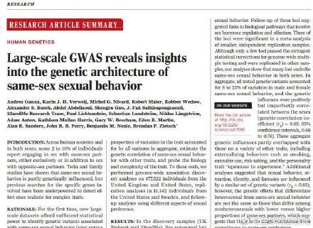 """一项大型研究的结果:与同性恋有关的基因可能有很多,性倾向不是""""连续的一个量表"""" 同志新闻 第2张"""