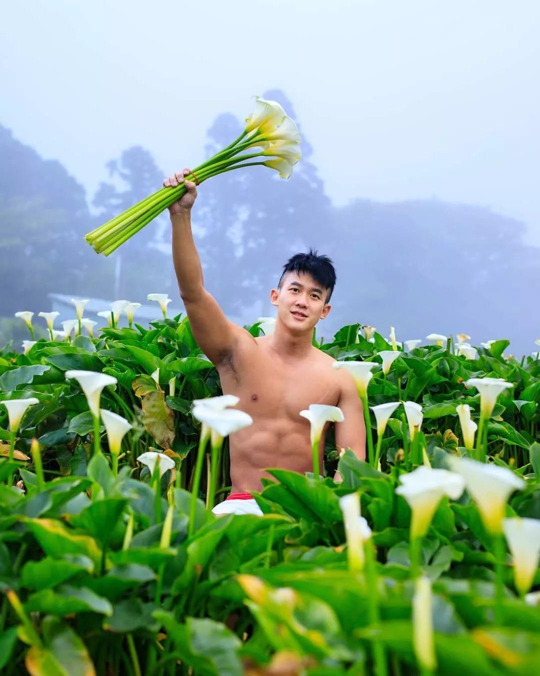 海芋花丛里的肌肉少年。